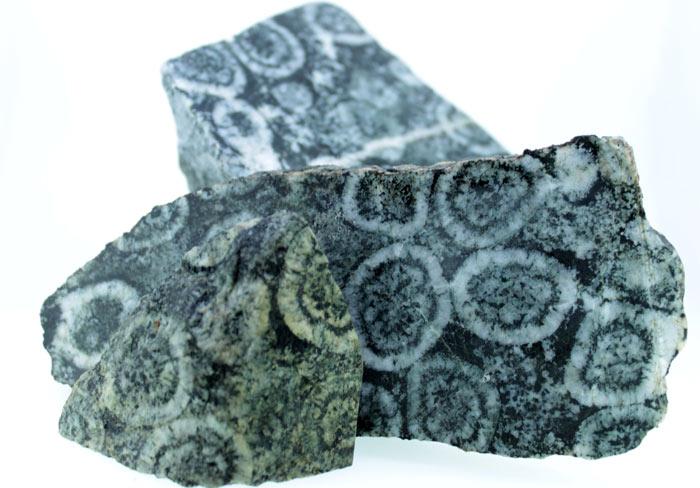 Exceptionnels blocs de diorite orbiculaire